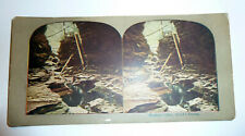 Watkins Glen, NY An Artist's Dream Antique Stereoview Card