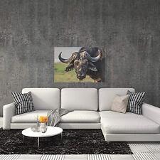 Buffalo Wall Art Rustic Buffalo Decor Man Cave Decor on Metal