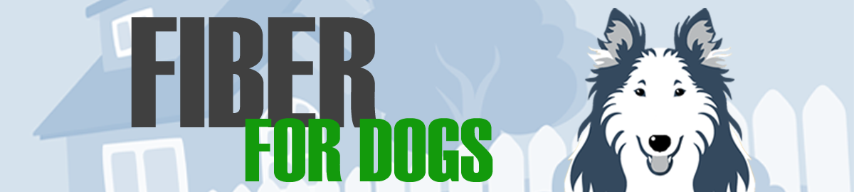 Fiber for Dogs