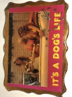 ITS A DOGS LIFE Vintage Hanging Wall Wood Clock Sign Picture Tested Working