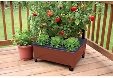 Raised Garden Bed Grow Box Kit Vegetables Tomato Watering System Rolling Planter
