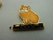 PIN'S   CHAT  /  LE CHAT     /  SUPERBE