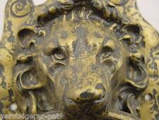 "Türklopfer Messing ""Löwenkopf"",brass doornocker lion,door nocker 0,95 Kilo"