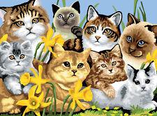 Malen nach Zahlen - Katzen