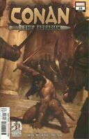 Marvel Comics Conan the Barbarian 16 (LGY 291) - 1st Print (2020) CVR A Vol 4
