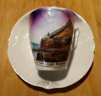 Newport, RI Cliff Walk Cup & Saucer Lusterware 2 Pcs Souvenir Vintage Germany