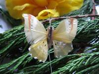 5.0cm wingspan Set of 2 Authentic Small Green Feather Fantail Butterfly