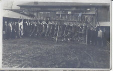 1920s RP POSTCARD HUNTERS TROPHY 20 DEAD DEER HANGING ON RACK