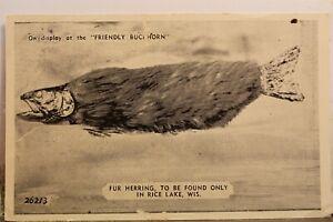 Wisconsin WI Rice Lake Friendly Buckhorn Postcard Old Vintage Card View Standard