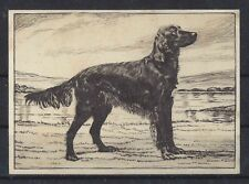 1938 UK Dog Art Photo Etching Ardath Lg Tobacco Cigarette Card IRISH SETTER VG+