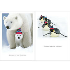 Help For Heroes Christmas Card Pack (Medium) - Snuggly Christmas (5 of Each)