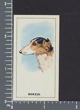 Borzoi dog Dogs Heads by G.P. Tea card #9
