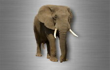 Autocollant sticker voiture moto decoration murale elephant savane animal