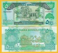 Somaliland 5000 Shillings p-21a 2011 UNC Banknote