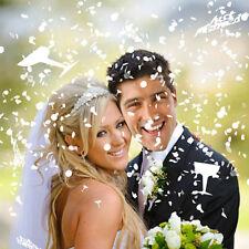 Pacchetto di Coriandoli da Nozze Wedding Confetti Riso Matrimonio Sposi Sposa