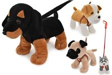 Plush Dog on Lead - Assorted Designs One Supplied at Random