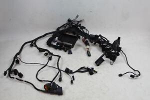 Triumph Daytona 675R 675 13-16 Main Wiring Harness Loom Wire Relays T2508080