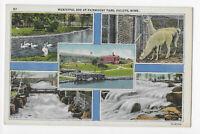 Municipal Zoo Fairmount Park, Duluth, Minnesota Linen Postcard