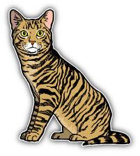 Mackerel Tabby Cat Animal Car Bumper Sticker Decal - 'Sizes'