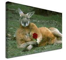 More details for kangaroo with red rose x-large 30