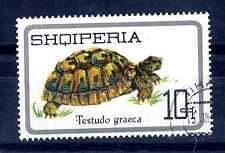 ALBANIA - 1966 - RETTILI: Tartaruga (Testudo graeca). E2269