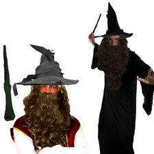 WIZARD CLOAK WITH WIG AND BEARD SET COSTUME MAGICAL FILM PROF FANCY DRESS