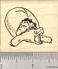 Baby Snapping Turtle Hatching rubber stamp G12003 WM
