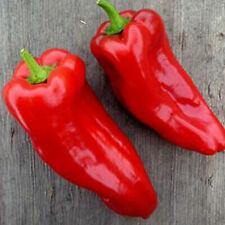 Poblano Ancho Hot Pepper - 250 Mg ~30 Seeds -Non-Gmo, Heirloom, Vegetable Garden