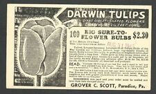 1942 POSTAL CARD PARADISE PA GROVER C SCOTT GROWS GIANT GOBLET DARWIN TULIPS