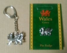 Welsh Dragon Keyring And Pin Badge Gift Set