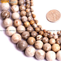 """Natural Gemstone Chrysanthemum Ammonit Coral Fossil Beads For Jewelry Making 15"""""""