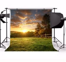 10x10ft Sunset Outdoor Scenic Trees Photography Backdrops Photo Background Props