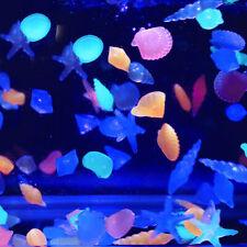 Luminous Stones Glow in the Dark Fish Tank Aquarium Fashion Shell Starfish Decor