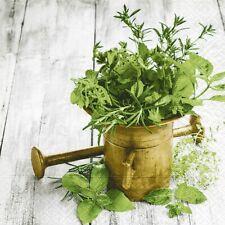 """4 Servietten """"Variety of herbs"""" 33x33 Napkins Herbst Kräuter Pflanzen Rosmarin"""
