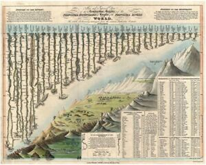 Comparative Map Mountains & Rivers World Map Rolled Canvas Giclee Print 30x24 in
