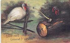 Thanksgiving Pun~Til We Meat Again~Tom & Hen Turkey~Axe in Log~1912 Postcard