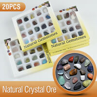 20pcs Natural Crystal Healing Chakra Gemstone Polished Stone Collection FT