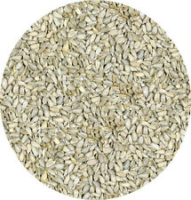 Sunflower Hearts 1kg Kernal Garden Wild Bird Seed Kernals Seeds Food Feed