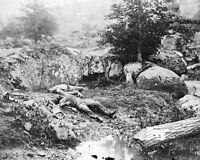 Confederate Dead Soldiers Slaughter Pen Gettysburg 8x10 Civil War Photo 1863