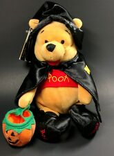 Disney Winnie the Pooh Mini Bean Bag Witch Pooh Walt Disney Pooh Bear 2000