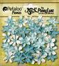 Mini Daisy Petite ROBIN EGG BLUE40 Paper 20-22mm Pearl Centre Penny Lane Petaloo