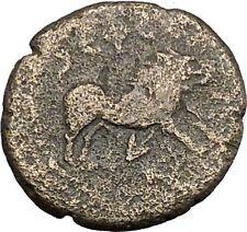 Antoninus Pius 138AD Ephesus in Ionia CALYDONIAN Boar Ancient Roman Coin  i50361