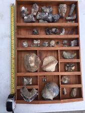 Large Variety Lot Dinosaur Fossils Vertebrae Bone Teeth Claw Etc FREE SHIPPING
