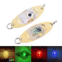 LED Underwater Deep Drop Eye Shape Squid Fish Fishing Lure Light Flashing Lamp.