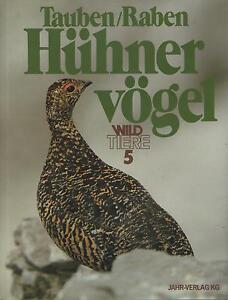 TAUBEN/RABEN. HUHNERVOGEL - Bruno Dittrich - 1980