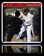 Dvd- Secrets of Effective Karate