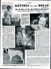 """BULLMASTIFF DOG BREED KENNEL ADVERT PRINT PAGE """"OF THE ROUGE"""" DOG WORLD 1955"""