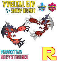 6IV YVELTAL ⚔️ SHINY or NOT 🛡 SWORD & SHIELD ⚔️🛡 Legit & Perfect
