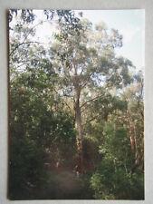 Kongwak Pioneer Reserve Brochure Postcard
