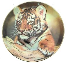 Compton and Woodhouse The Tiger Cub Young Princes Willem De Beer CP2460